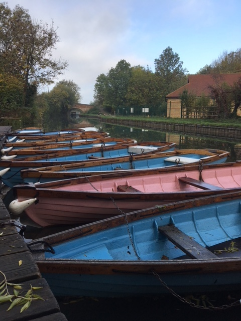 Rowboats ready to go!